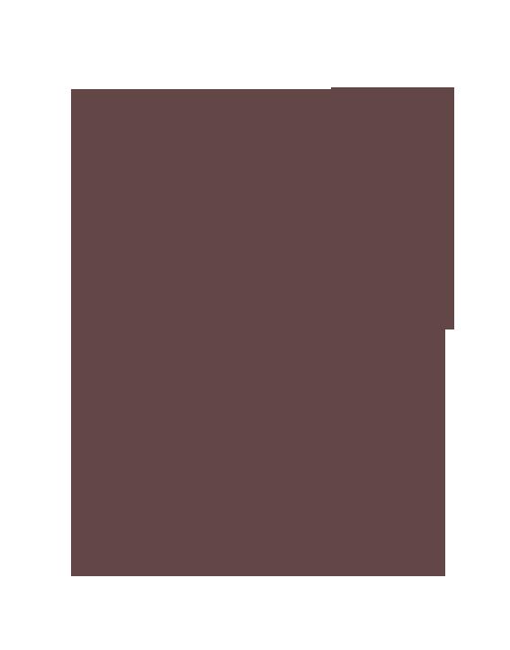 名古屋の弦楽器専門店 KAEDE STRINGS | バイオリン・ビオラ・チェロ・弓の販売